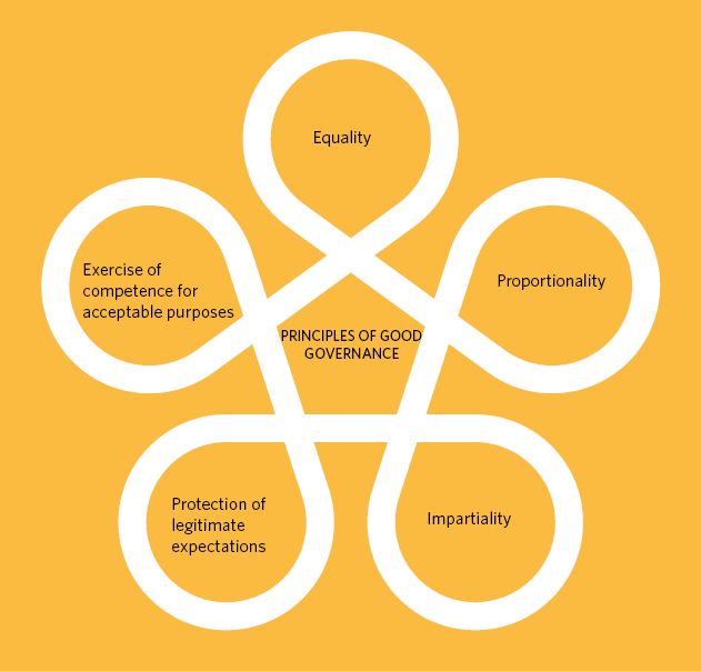 The five principles of good governance are equality, proportionality, impartiality, protection of legitimate expectations, and exercise of competence for acceptable purposes.