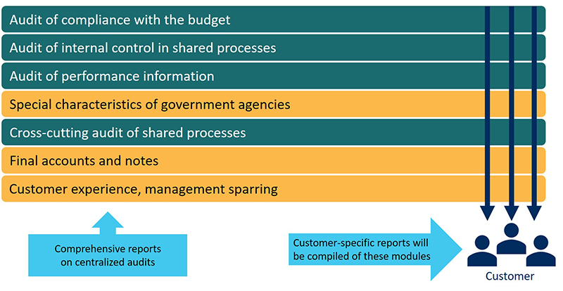 In a financial audit, a customer-specific report on the following centralised subject matters is given: an audit of compliance with the budget, an audit of internal control in shared processes, an audit of performance data and a cross-cutting audit of shared processes. The audit of compliance with the budget, the internal control of customer-specific processes and the audit of performance data consider the agency's special characteristics. The cross-cutting audit of shared processes covers financial statements and their appendices. It also includes customer experience and management sparring.